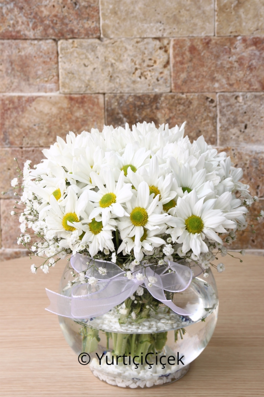 They deserve the most beautiful flowers for your loved ones with flowers 2560 izmirmasajfo